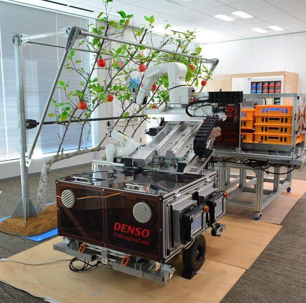 「人とほぼ同じ速度」果実収穫ロボットを試作 農研機構・立命大・デンソー