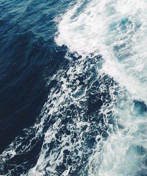 1万㌔離れた黒潮とメキシコ湾流 海水温が同時変化